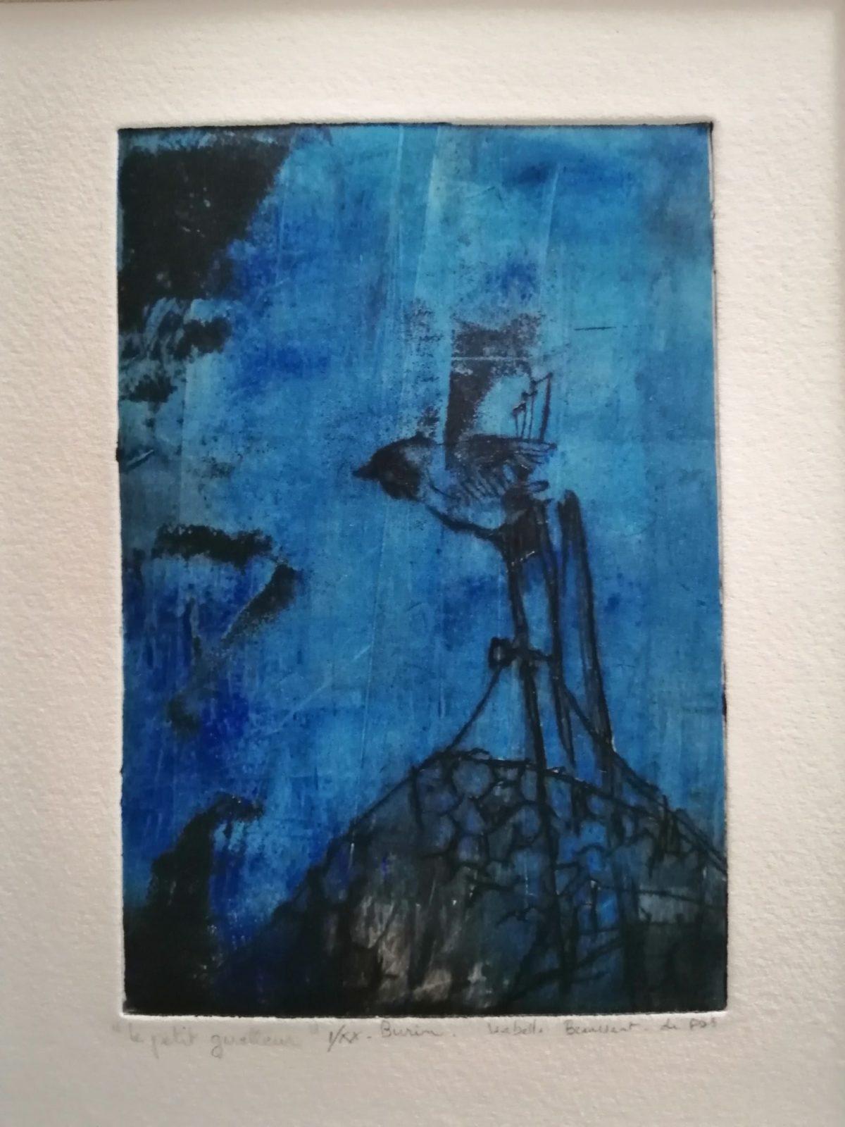 Moineau bleu – Burin et pointe sèche – 10×15