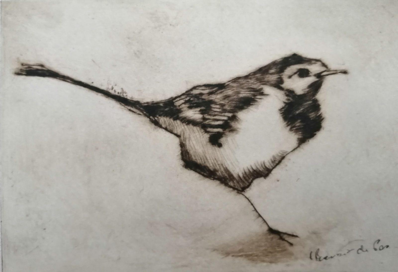 Le petit piaf – Burin -10×15